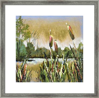 Cattails At Forest Park Framed Print by Vic  Mastis