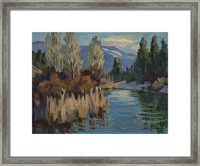 Cattails At Harry's Pond 1 Framed Print by Diane McClary