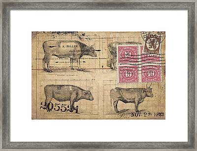 Cattle Arrived Framed Print by Carol Leigh