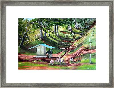 Cattle At Orwell Cove Framed Print by Lorraine Vatcher