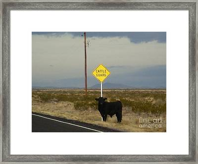 Cattle Guard Framed Print by Craig Pearson