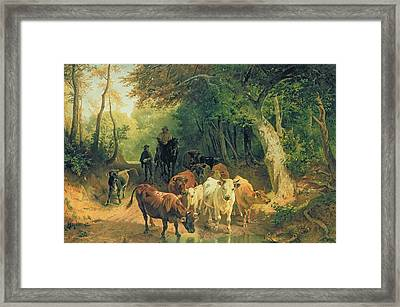 Cattle Watering In A Wooded Landscape Framed Print by Friedrich Johann Voltz