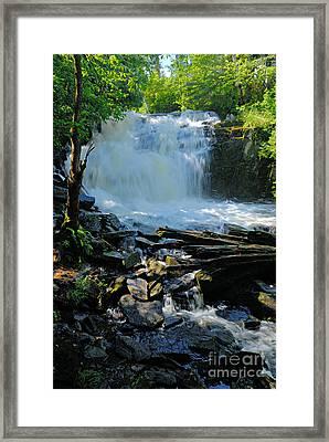 Cattyman Falls 2 Framed Print by Larry Ricker
