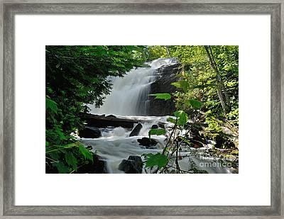 Cattyman Falls Framed Print by Larry Ricker