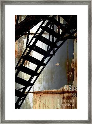 Catwalk II Framed Print by Sherry Davis