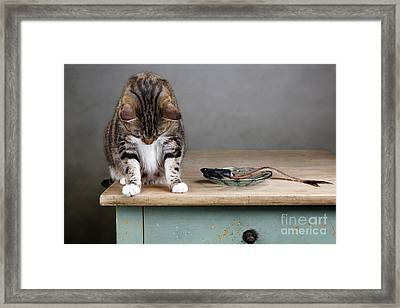 Caught In The Act Framed Print by Nailia Schwarz