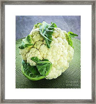 Cauliflower Framed Print by Elena Elisseeva