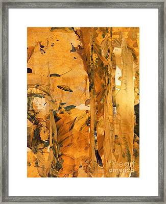 Cave Of Gold Framed Print by Nancy Kane Chapman