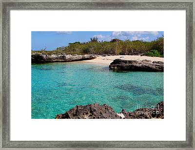 Cayman Beach Framed Print by Carey Chen