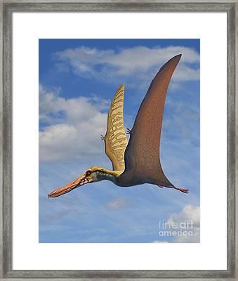 Cearadactylus Atrox, A Large Pterosaur Framed Print by Sergey Krasovskiy