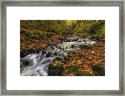 Cedar Creek 2 Framed Print by Mark Kiver