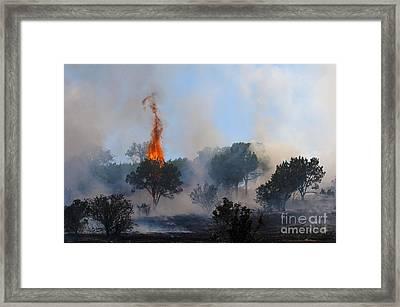 Cedar Fire Framed Print by Richard Mason