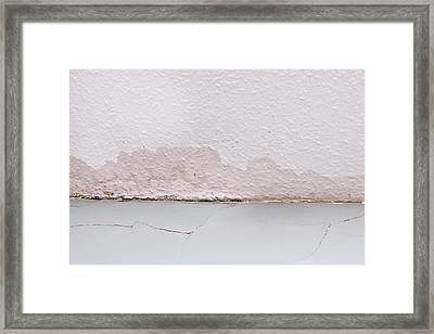 Ceiling Damp Framed Print by Tom Gowanlock