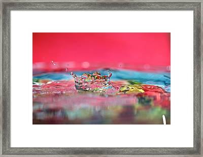Celebration Framed Print by Lisa Knechtel