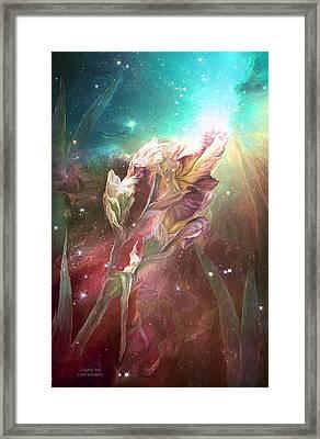 Celestial Iris Framed Print by Carol Cavalaris
