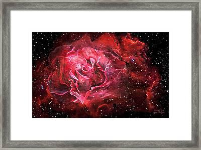 Celestial Rose Framed Print by Carol Cavalaris