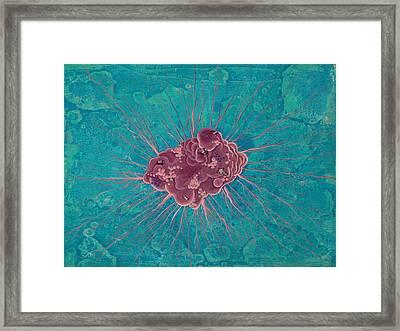 Cell No.15 Framed Print by Angela Canada-Hopkins