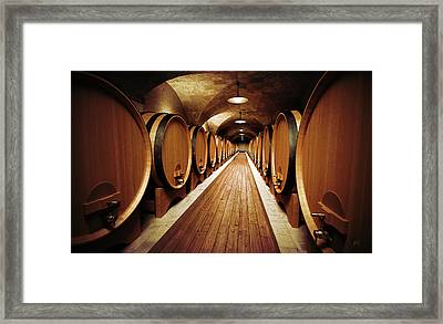 Cellar Framed Print by Bruno Haver