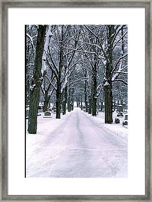 Cemetery In Snow Framed Print by Gail Maloney