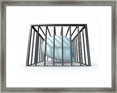 Censorship Of Speech Caged Framed Print by Allan Swart
