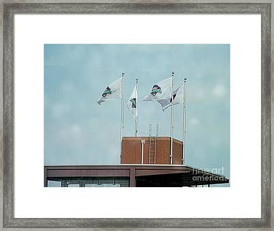 Center Field Flags Framed Print by Terry Weaver