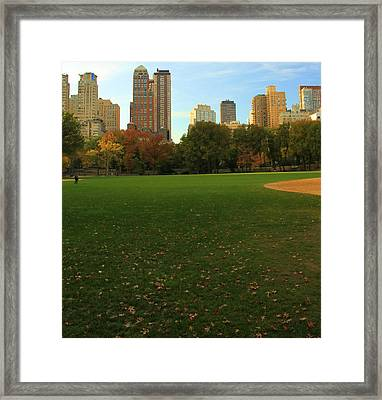 Central Park In Autumn Framed Print by Dan Sproul