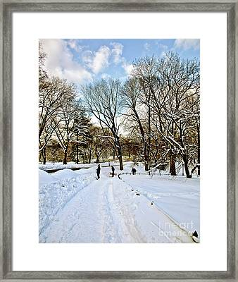 Central Park Snow Storm One Day Later2 Framed Print by Madeline Ellis