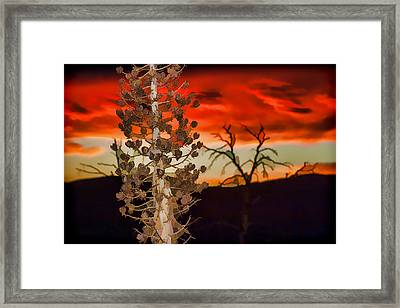 Century Soldier Sunset Framed Print by Scott Campbell