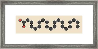 Cervonic Acid Molecule Framed Print by Molekuul