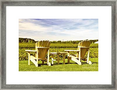 Chairs Overlooking Vineyard Framed Print by Elena Elisseeva