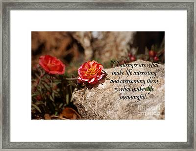 Challenges Framed Print by Diane E Berry