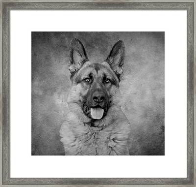 Chance - Black And White II Framed Print by Sandy Keeton