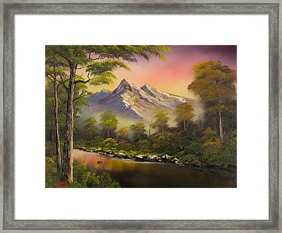 Summer Evening Framed Print by C Steele