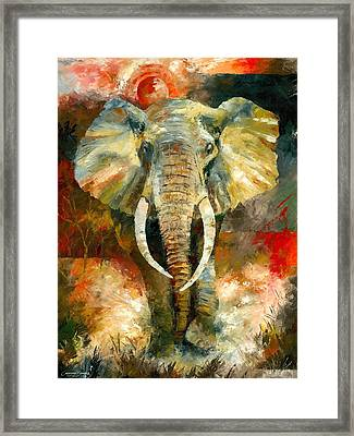 Charging African Elephant Framed Print by Christiaan Bekker