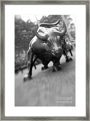 Charging Bull 2 Framed Print by Tony Cordoza