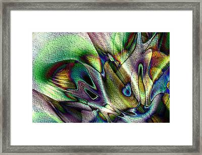 Charisma Framed Print by Kiki Art