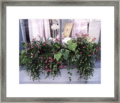Charleston Romantic Floral Window Box Flowers Vintage Cottage Chic Flower Box  Framed Print by Kathy Fornal