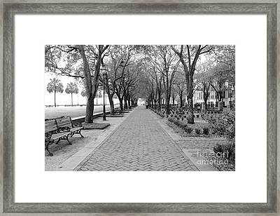 Charleston Waterfront Park Walkway - Black And White Framed Print by Carol Groenen