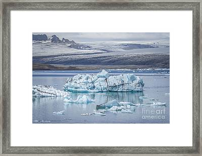 Chasing Ice Framed Print by Evelina Kremsdorf