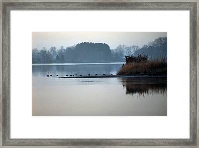 Checking The Spread Framed Print by Skip Willits