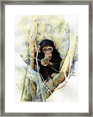 Cheeky Framed Print by Roger Bonnick