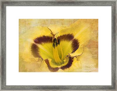 Cheerfully Yours Framed Print by Betty LaRue