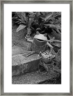Cheers In Black And White Framed Print by Suzanne Gaff