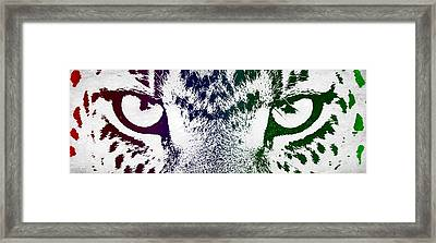 Cheetah Eyes Framed Print by Aged Pixel