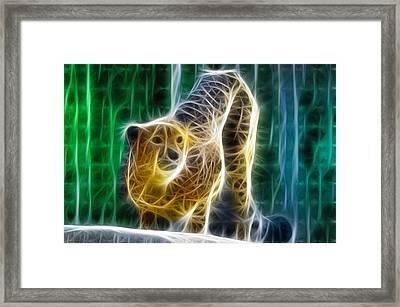 Cheetah Fractal Framed Print by Bill Cannon
