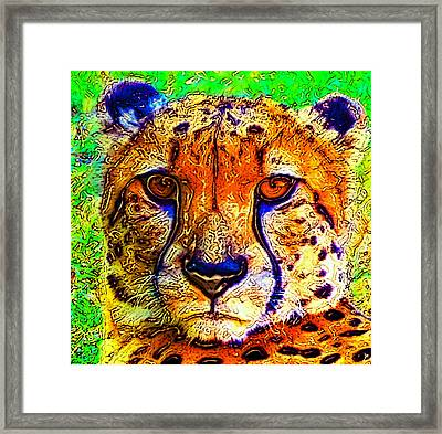 Face Of The Cheetah Framed Print by David Lee Thompson