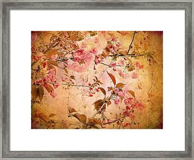 Cherry Blossom Tapestry Framed Print by Jessica Jenney