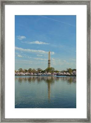 Cherry Blossoms 2013 - 045 Framed Print by Metro DC Photography