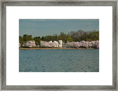 Cherry Blossoms 2013 - 055 Framed Print by Metro DC Photography