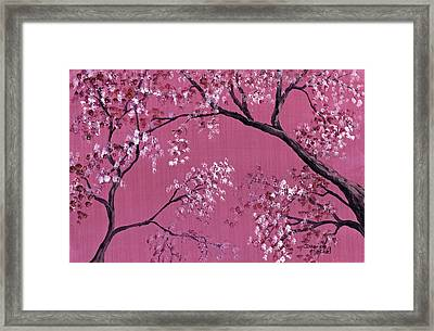 Cherry Blossoms  Framed Print by Darice Machel McGuire